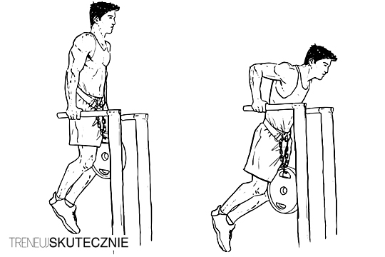 Klasyczne pompki na poręczach z ciężarem własnego ciała oraz dodatkowym obciążeniem. Na obrazku poglądowym widać początek oraz koniec ruchu.